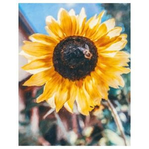 Other - Sunflower on Bee 8X10 Photographic Painting